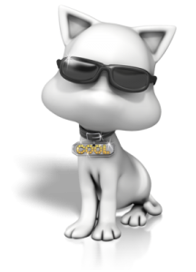 cool_cat_sunglasses_400_clr_11958